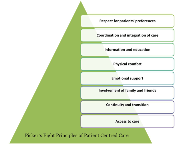 what does patient care entail